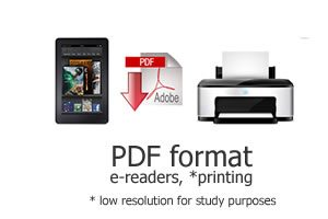 ASA-format-pdf