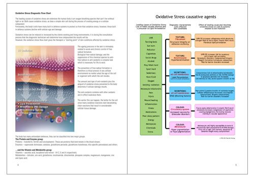 Sample pages: Skin Diagnostic Flowcharts
