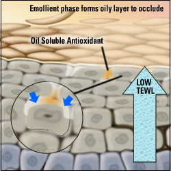 Oil-soluble