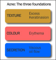 The foundations of acne
